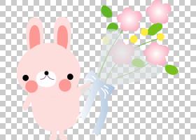Nosegay花卉保存结婚纪念日,粉红色兔子卡通装饰材料PNG剪贴画卡