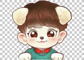 EXO赤壁粉丝艺术绘画K-pop,赤壁PNG剪贴画哺乳动物,脸,carnivoran
