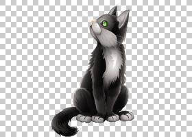 黑猫小猫卡通,卡通黑猫,黑色和灰色的猫查找PNG剪贴画爱,愿望,猫