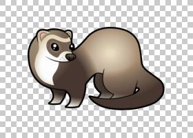黑脚鼬狗卡通,雪貂PNG剪贴画哺乳动物,动物,猫像哺乳动物,食肉动