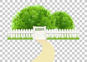 裁减路线,道路与栅栏和树木透明,绿色生叶布什附近栅栏PNG剪贴画