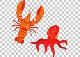 海鲜龙虾卡通,辣龙虾PNG剪贴画食品,动物,橙色,火锅,啤酒,动物源