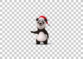 汉字象形文字语言课,熊猫PNG剪贴画动物,carnivoran,贴纸,卡通,熊
