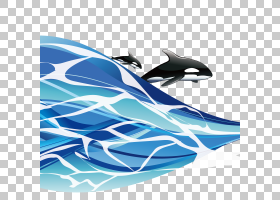 海,出海鲨鱼PNG剪贴画蓝色,海洋哺乳动物,哺乳动物,动物,电脑壁纸