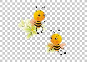 贵州Apis cerana Apidae卡通蜂箱,可爱的小蜜蜂PNG剪贴画蜜蜂,动
