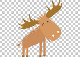 驯鹿牙科牙,棕色驯鹿PNG剪贴画鹿茸,哺乳动物,英语,手,脊椎动物,
