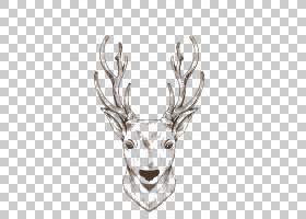驯鹿麋鹿麋绘图,圣诞驯鹿画棕色线PNG剪贴画水彩画,鹿茸,头,抽象