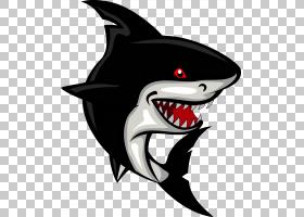 鲨鱼卡通,鲨鱼PNG剪贴画海洋哺乳动物,动物,鲨鱼卡通,卡通鲨鱼,虚