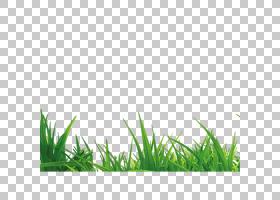 绿色能源Microchloa草手册,草PNG剪贴画叶,卡通草,人造草,草坪,剪