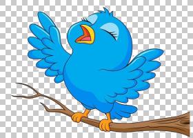 鸟卡通,卡通树鸟唱PNG剪贴画蓝色,摄影,树枝,长尾小鹦鹉,脊椎动物