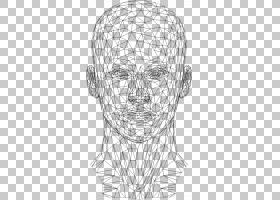 网站线框动画,动画PNG剪贴画3D计算机图形学,脸,单色,对称性,头,