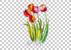 郁金香水彩花卉水彩画,水彩玫瑰PNG剪贴画水彩叶子,插花,画,手,植