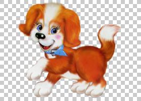 金毛猎犬公牛小狗可爱,橙色可爱的小狗卡通,棕色和白色的小狗PNG