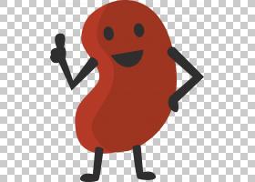 芸豆卡通,肾PNG剪贴画豆,动画,平托豆,利马豆,肾,人类行为,绿豆,