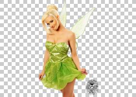 冬青麦迪逊小叮当贝尔公主极光迪士尼公主,迪士尼公主PNG剪贴画卡