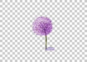 蒲公英紫色,紫色蒲公英PNG剪贴画画,紫罗兰色,手,电脑,电脑壁纸,
