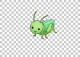 蚱蜢昆虫蟋蟀可爱,昆虫PNG剪贴画动物,昆虫,动物群,草,虚构人物,