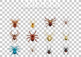 蜘蛛昆虫股票,各种蜘蛛PNG剪贴画昆虫,对称性,生日快乐矢量图像,