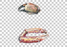 螃蟹和爪子绘图龙虾,蟹爪PNG剪贴画杂项,甲壳动物,海鲜,卡通,爪,