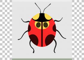 瓢虫卡通字体,Apps bug好友PNG剪贴画卡通,节肢动物,系统,高原,害