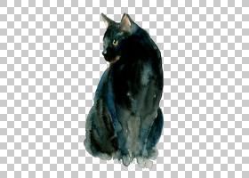 泰国猫小猫水彩:动物水彩画,黑猫PNG剪贴画画,猫像哺乳动物,黑头
