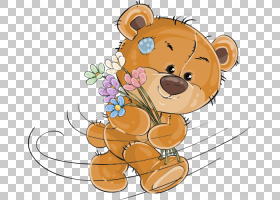 泰迪熊,熊PNG剪贴画哺乳动物,动物,猫像哺乳动物,食肉动物,脊椎动