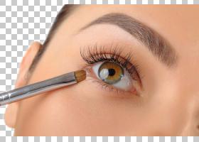 眉毛化妆品眼影眼睑,眼部特写PNG剪贴画脸,铅笔,摄影,人民,修复,