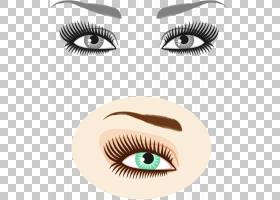 眉毛摄影,手绘眼部眼部化妆PNG剪贴画水彩画,画,化妆品,人,手绘,