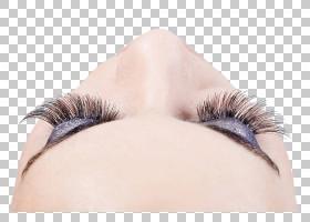 睫毛扩展睫毛膏美容美容,活眼妆PNG剪贴画脸,黑头发,人,化妆品,女