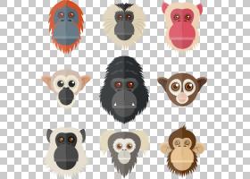 灵长类动物狐猴大猩猩猩猩,手绘大猩猩动物元素PNG剪贴画水彩绘画