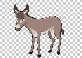 牛山羊牲畜卡通,驴PNG剪贴画马,哺乳动物,动物,动物群,生日快乐矢