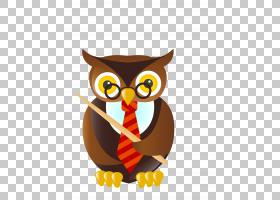 猫头鹰学生老师卡通,小猫头鹰老师PNG剪贴画猫头鹰,教学,动物,鸟,