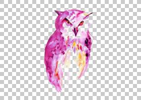 猫头鹰水彩画绘画肖像,猫头鹰PNG剪贴画动物,海报,脊椎动物,花卉,