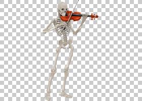 小提琴技术人体骨骼,骨架弹小提琴PNG剪贴画人类,小提琴,卡通,虚