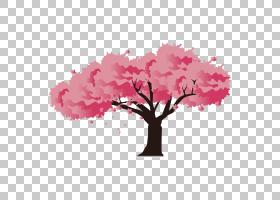 日本樱花,树,樱花PNG剪贴画树枝,分支,电脑壁纸,棕榈树,松树,卡通