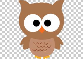 小猫头鹰,猫头鹰卡通的PNG剪贴画鸟,鼻子,网站,婴儿猫头鹰,stockx