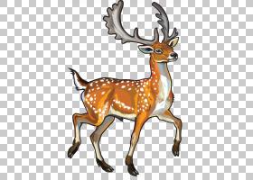 小鹿Chital,鹿PNG剪贴画鹿茸,哺乳动物,画,动物,手,野生动物,圣诞