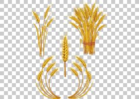 小麦皇室耳朵,手绘卡通食品小麦PNG剪贴画卡通人物,食品,手,摄影,