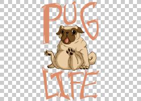帕格T,衬衫样机,帕格生活PNG剪贴画哺乳动物,图像文件格式,食肉动