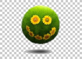 微笑笑欧几里德,微笑PNG剪贴画人,海报,向日葵,草,花,雏菊家庭,嘴