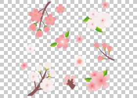 樱花樱桃,新鲜樱桃卡通PNG剪贴画卡通人物,插花,叶,底纹,分支,卡