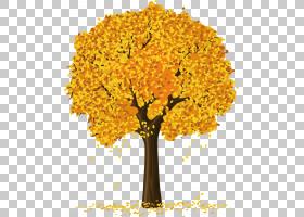 树,苹果树PNG剪贴画叶,摄影,树枝,分支,棕榈树,松树,花卉,卡通,绘