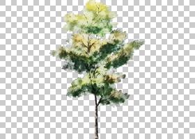 树水彩绘画图画建筑学剪影,树,绿色和黄色生叶的树PNG clipart叶,