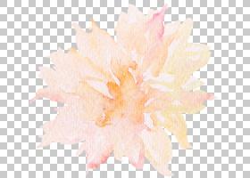 水彩画,手绘水彩菊花PNG剪贴画水彩叶子,画,叶,卡通,绘画,女人,女