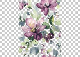 水彩画水彩花卉花艺设计,水彩画紫色花朵盛开的PNG剪贴画紫色,水
