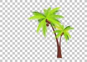 喀拉拉邦Arecaceae椰子旅行图标,椰子树PNG剪贴画电视,海滩,叶子,