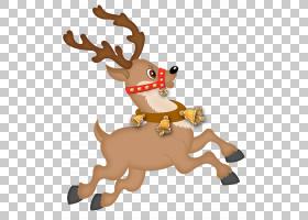 圣诞老人的驯鹿圣诞节装饰品字符,可爱的驯鹿,驯鹿PNG剪贴画哺乳
