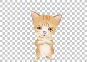 孟加拉猫土耳其安哥拉猫小猫,棕色小猫PNG剪贴画哺乳动物,动物,猫