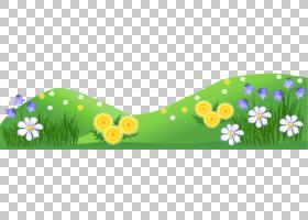 卡通夏天,草地与花,多彩多姿的花卉PNG剪贴画叶,电脑壁纸,花卉园,