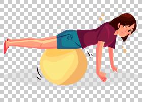 体育锻炼欧几里德绘图物理疗法,瑜伽球锻炼PNG剪贴画体育健身,手,
